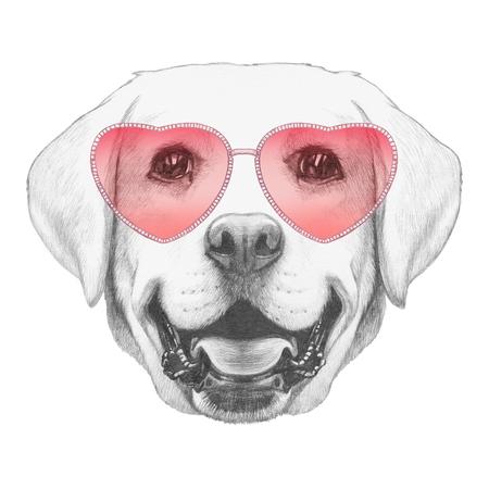 labrador: Labrador in Love! Portrait of Labrador with sunglasses. Hand drawn illustration. Stock Photo