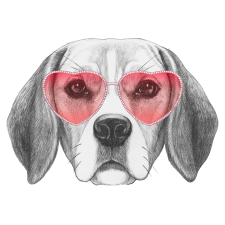 Beagle in Love! Portrait of Beagle Dog with sunglasses. Hand drawn illustration.