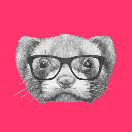 Portrait of Least Weasel with glasses. Hand drawn illustration.