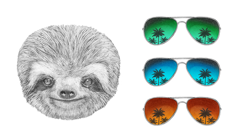 sloth: Portrait of Sloth with glasses. Hand drawn illustration. Stock Photo