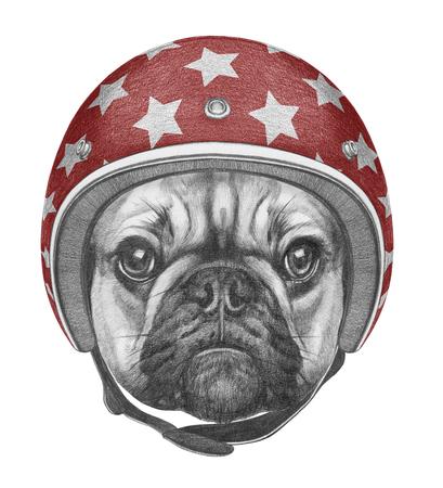 Ritratto di Bulldog francese con il casco. illustrazione disegnata a mano. Archivio Fotografico - 73449494