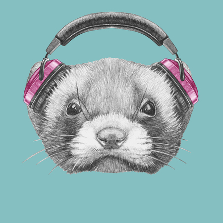 Portrait of Least Weasel with headphones. Hand drawn illustration.