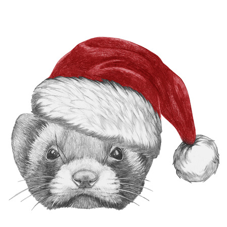 Portrait of Least Weasel with Santa Hat. Hand drawn illustration.
