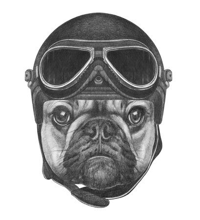 Porträt der französischen Bulldogge mit Helm. Hand gezeichnet Illustration. Standard-Bild