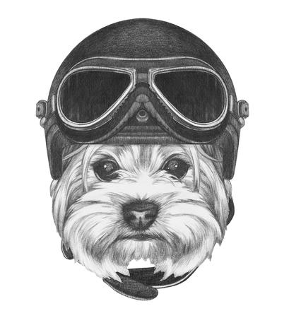 Portrait of Yorkshire Terrier with Vintage Helmet. Hand drawn illustration.
