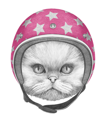 Portrait of Persian Cat with Helmet. Hand drawn illustration.
