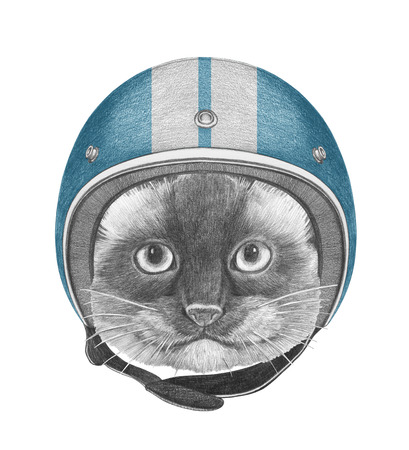 Portrait of Siamese Cat with Helmet. Hand drawn illustration.