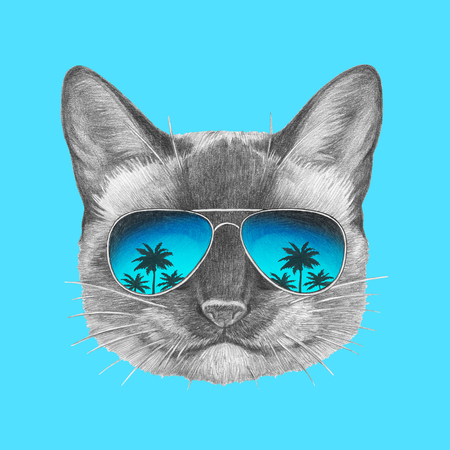 Portrait of Siamese Cat with mirror sunglasses. Hand drawn illustration. Imagens
