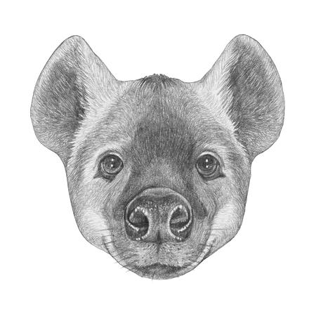 Portrait of Hyena. Hand-drawn illustration.