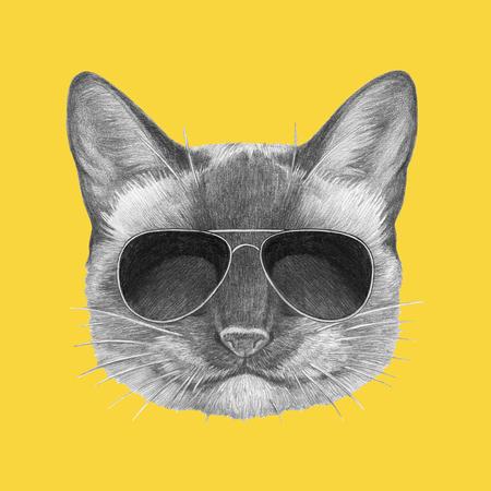 Portrait of Siamese Cat with sunglasses. Hand drawn illustration. Stock Photo