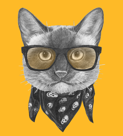 Portrait of Siamese Cat with glasses and scarf. Hand-drawn illustration. Imagens