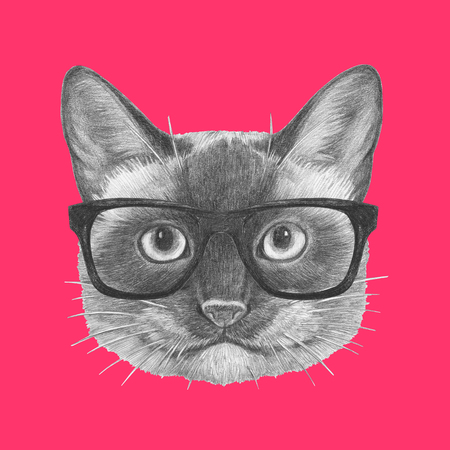 Portrait of Siamese Cat with glasses. Hand drawn illustration.