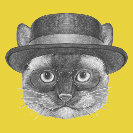 Portrait of Siamese Cat with glasses and hat. Hand drawn illustration.