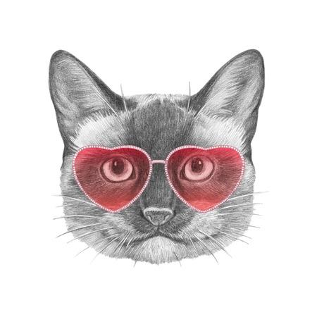 Siamese Cat in Love! Portrait of Siamese Cat with sunglasses. Hand drawn illustration.