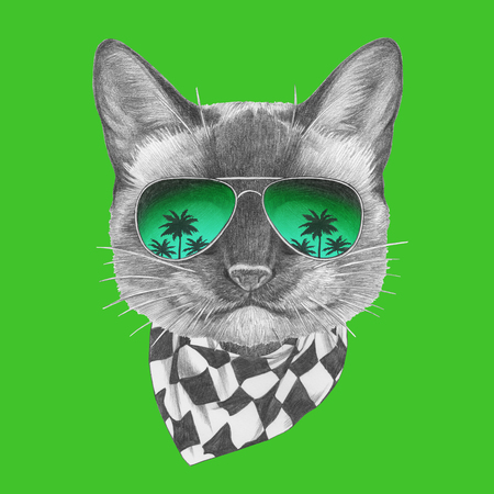 Portrait of Siamese Cat with mirror sunglasses and scarf. Hand-drawn illustration. Imagens