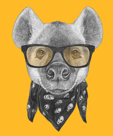 Portrait of Hyena with sunglasses and scarf. Hand-drawn illustration.