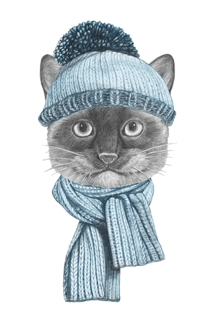 Portrait of Siamese Cat with scarf and hat. Hand-drawn illustration. Imagens