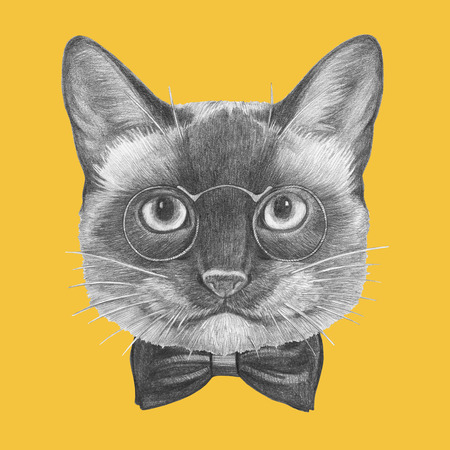 Portrait of Siamese Cat with glasses and bow tie. Hand-drawn illustration.