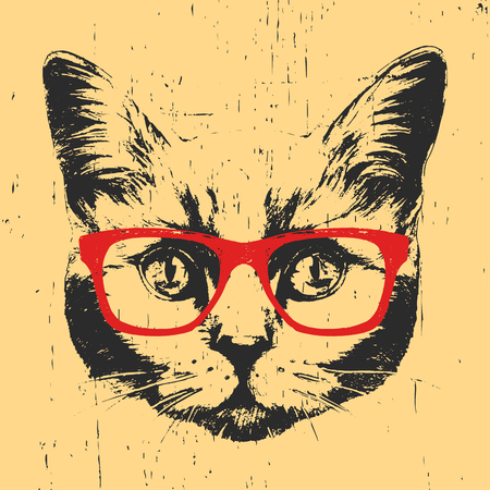 Portrait of British Shorthair Cat with glasses. Hand drawn illustration. Vector.
