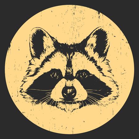 Retrato de mapache. Ilustración dibujada a mano. Vector.