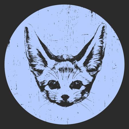 Portrait of Fennec Fox. Hand drawn illustration. Vector.