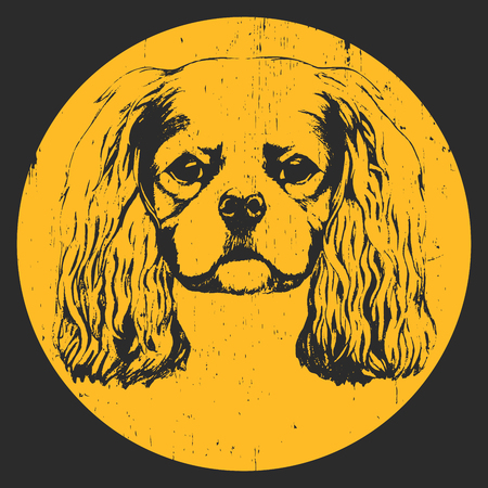 Portrait of Cavalier King Charles Spaniel. Hand drawn illustration. Vector