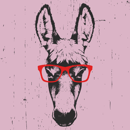 Portrait of Donkey. Hand drawn illustration. Vector