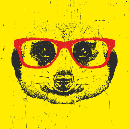 Portrait of Meerkat with glasses. Hand drawn illustration. Vector