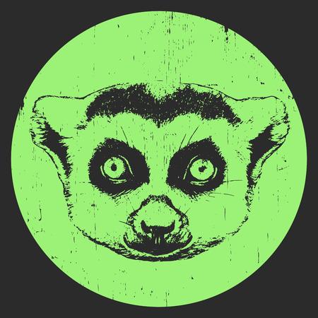 Portrait of Lemur. Hand drawn illustration. Vector Ilustração Vetorial