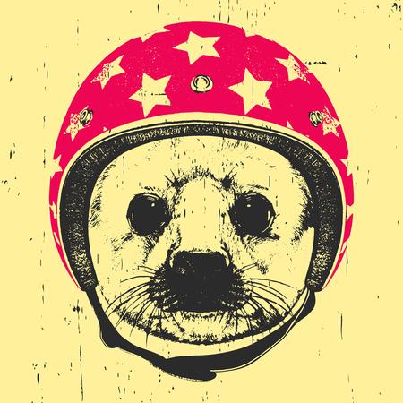 Portrait of Baby Fur Seal with  Helmet. Vector