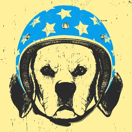 Portrait of Beagle with Helmet. Vector