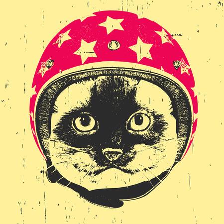 Portrait of Siamese Cat with  Helmet. Vector Ilustração