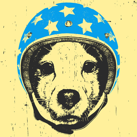 Portrait of Jack Russell with Helmet. Vector