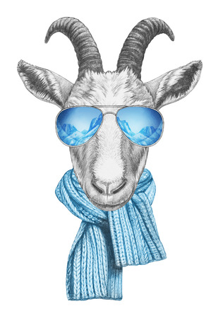 Portrait of Goat with scarf and mirrored sunglasses. Hand-drawn illustration.