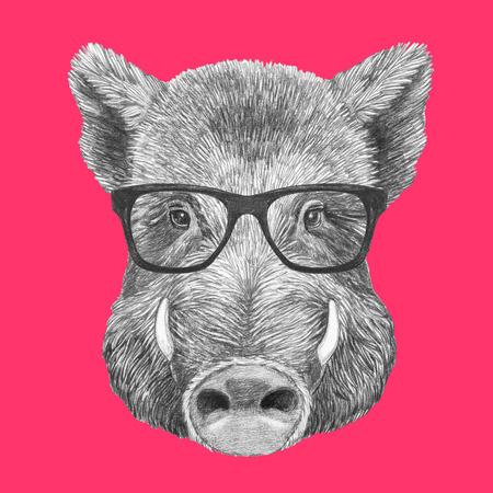 Portrait of Boar with glasses, hand-drawn illustration Stok Fotoğraf