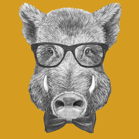 Portrait of Boar with glasses and bow tie, hand-drawn illustration