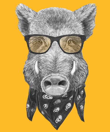 Portrait of Boar. Hand-drawn illustration.