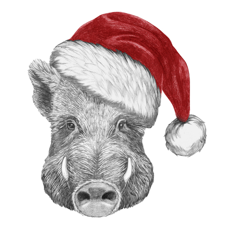 Portrait of Boar with santa hat. Hand-drawn illustration. Stock Photo