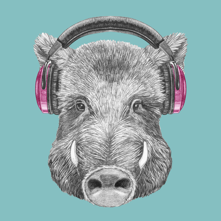 Portrait of Boar with headphones. Hand-drawn illustration.