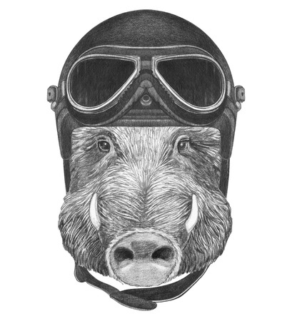 Portrait of Boar with vintage helmet, hand-drawn illustration Stock Photo