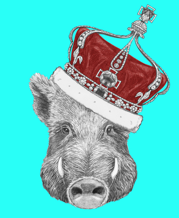 Portrait of Boar with crown. Hand-drawn illustration. Stock Photo