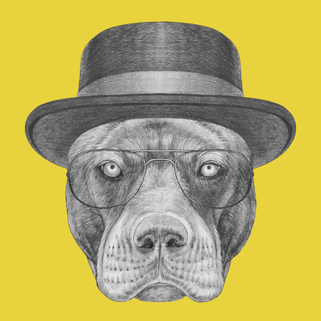 Portrait of Pit Bull with hat and glasses. Hand-drawn illustration.