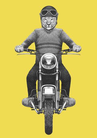 Leopard rides motorcycle. Hand-drawn illustration. 写真素材