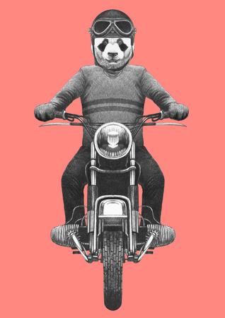 Panda rides motorcycle. Hand-drawn illustration.