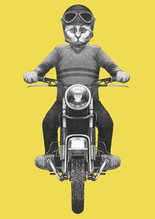 Cat rides motorcycle. Hand-drawn illustration.