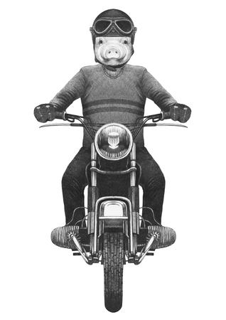 Piggy rides motorcycle. Hand-drawn illustration.