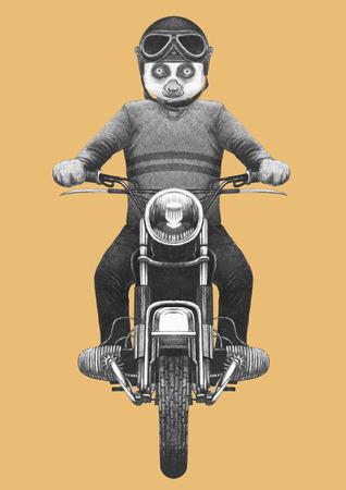 Lemur rides scooter. Hand-drawn illustration.
