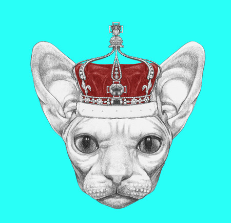 285a1e727bafe Portrait of Sphynx Cat with crown. Hand-drawn illustration. Stock Photo