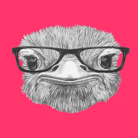Portrait of Ostrich with glasses, hand-drawn illustration Stok Fotoğraf