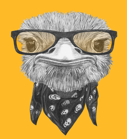 Portrait of Ostrich with glasses and scarf. Hand-drawn illustration. Stok Fotoğraf
